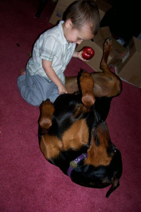 Doberman female with children
